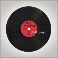 Vinyl Record Pot Coaster 15cm_