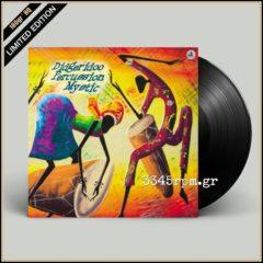 Didgeridoo Percussion Mystic - Vinyl LP 180gr HQ
