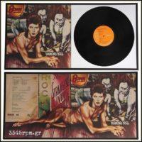 Vinyl Record Double Frame Display 2 x LP- 12inch