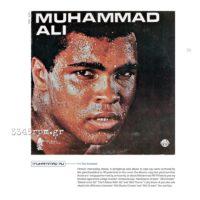 Celebrity Vinyl -Music Book