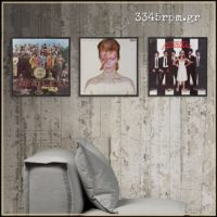 Vinyl Record Frame Display LP-12inch