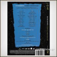 Bowie, David - Serious Moonlight- DVD